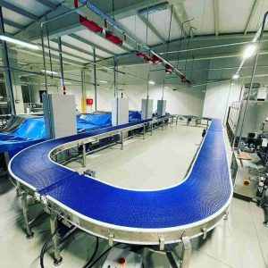 Material Conveyor for Filling Packing Machinery